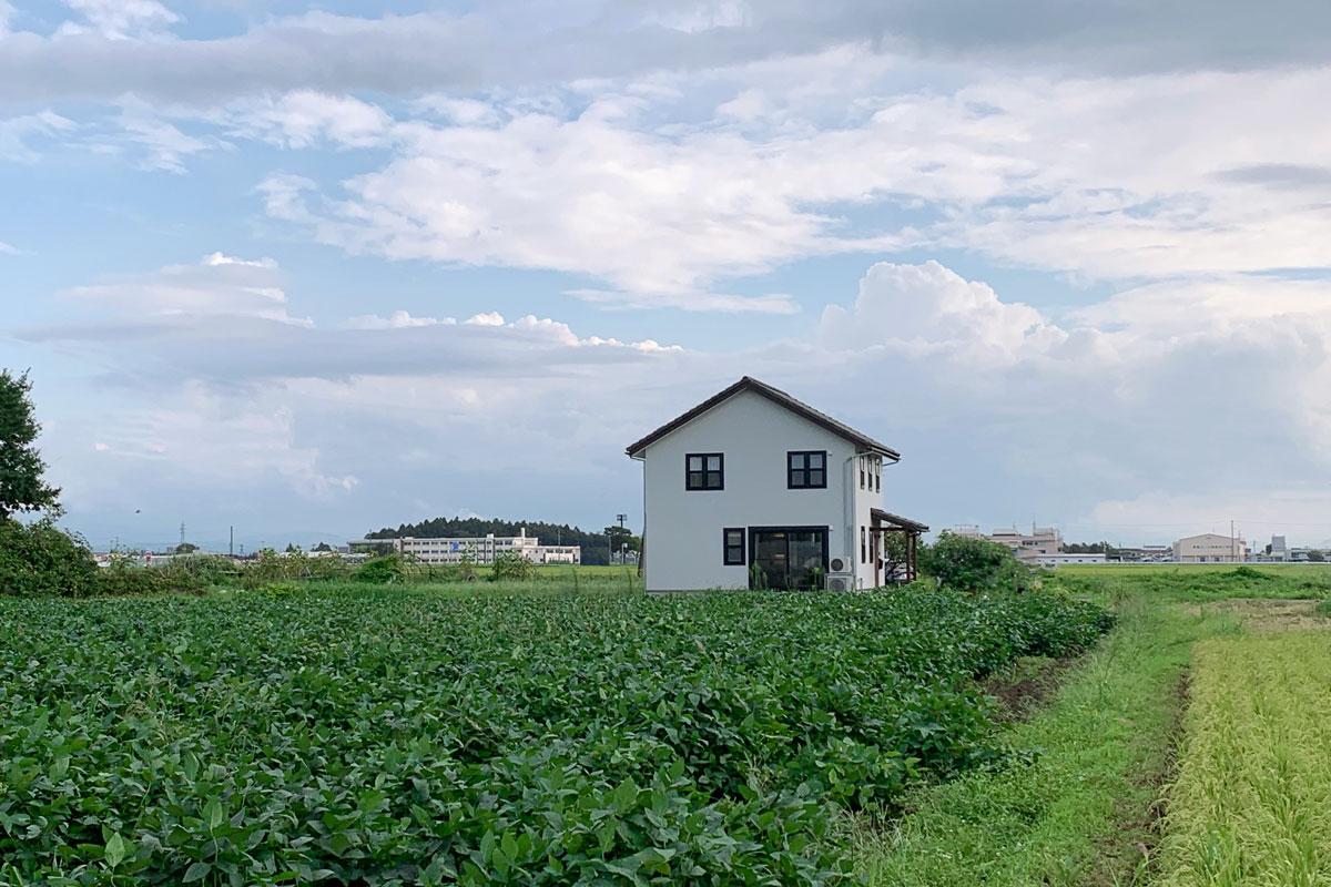 田園に佇むブルーグレーの塗壁のMamanの家。30Sタイプ。【酒田鶴岡で新築、デザイン住宅、リノベーションの工務店 ナチュラル工房伊藤住宅】