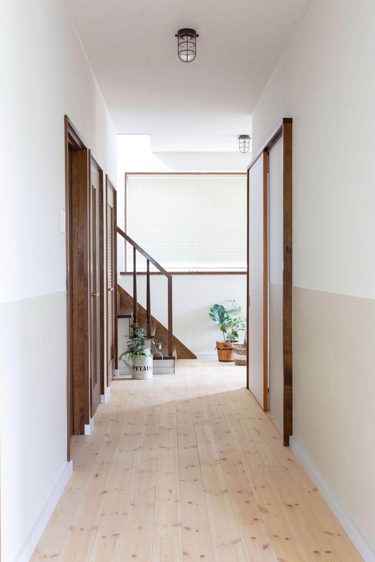 無垢の床が心地よいグリーンの似合う廊下